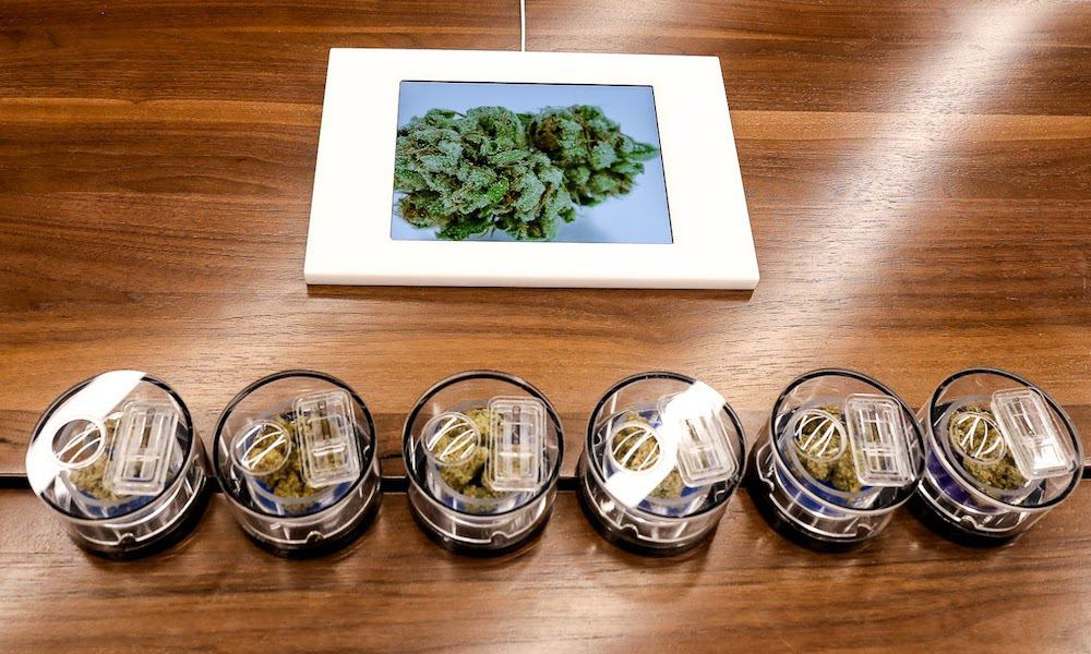 the 10 best marijuana dispensaries in los angeles