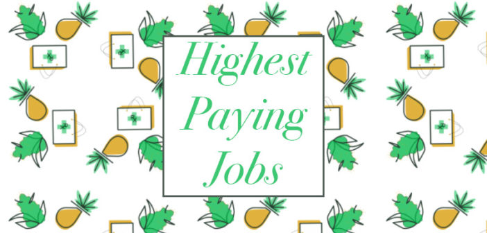 Job Recruiters Say These 3 Jobs In The Cannabis Industry Command The